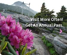 GFM_AnnualPass_dec10