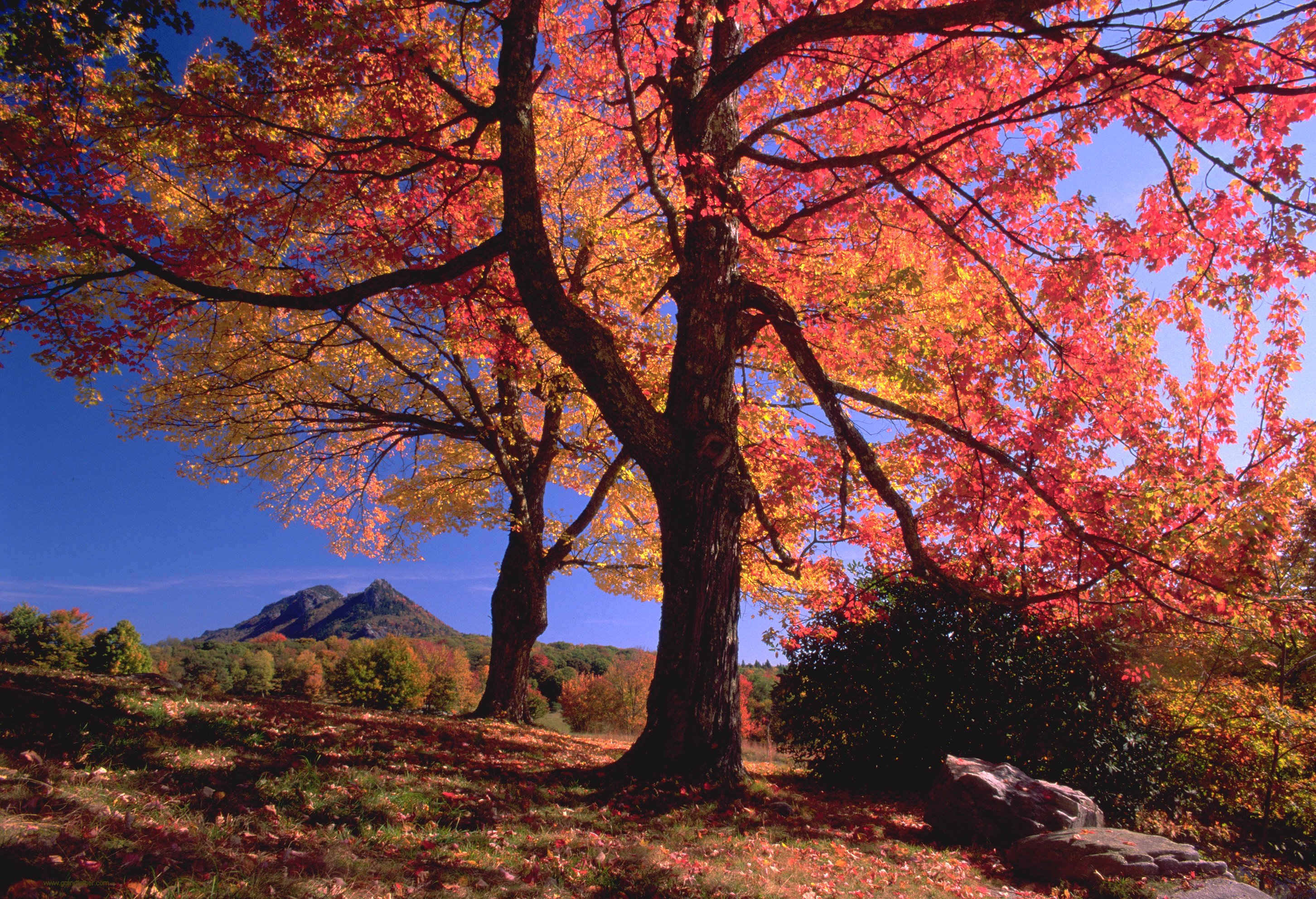 hi res photosfall grandfather mountain wonders never