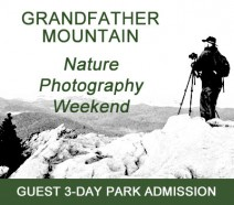 npw_guest_3day_admission
