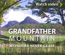 video_promo_gfm_wonders