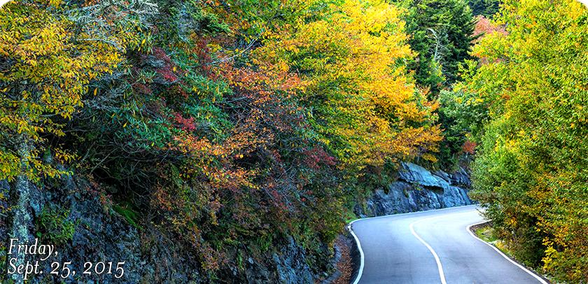 Road to Scheer Bluff