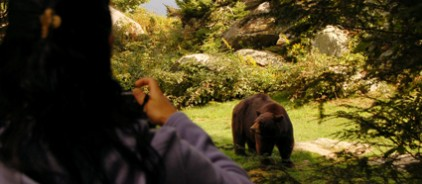 Lady taking picture of bear