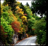 autumn_3_fr