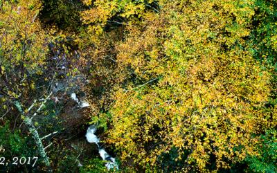 Green Mountain Creek
