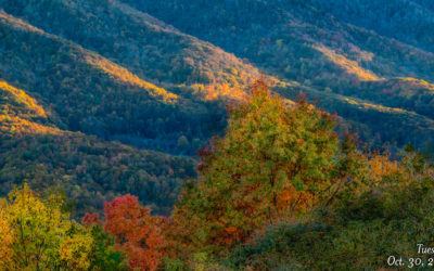 Fall Photo Finale