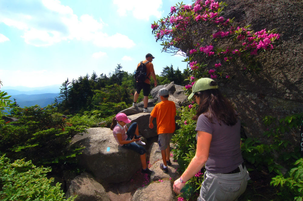 Walking & Hiking | GRANDFATHER MOUNTAIN : Wonders Never Cease