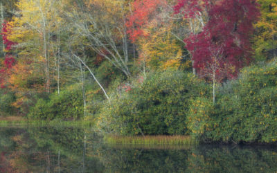 Price Lake